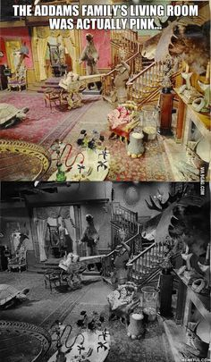 living rooms, living room sets, the addams family, colors, black white, pink, hous, addam famili, families