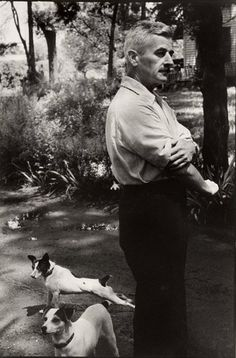 """William Faulkner and two of his many rat terriers. In the original version of """"The Bear,"""" a fyce (terrier) named Nip tenaciously fights a bear, refusing to give up until pulled away by his master. Yep, that's a terrier. jack russells, author, peopl, william faulkner, henri cartierbresson, book, dog, writer, mississippi"""