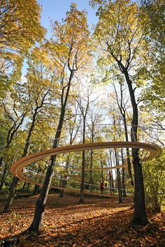'A Path in the Forest' installation from May 2011 – October 2011, in Kadriorg Park, Tallinn, Estonia.  Designed by Tetsuo Kondo Architects with engineers from SAP / Sasaki and Partners.  (made from steel and without a single column, the steel foot path allows people to explore the trees without impacting the soil).