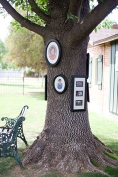 family pictures, parti decor, birthday parties, anniversary parties, family reunions, outdoor parties, tree trunk, clever outdoor, outdoor party decor