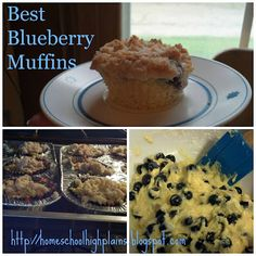 Love these blueberry muffins! Great use for raw milk that went past it's prime (sour RAW milk)