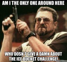 Dump A Day Ice Bucket Challenge Funnies - 18 Pics