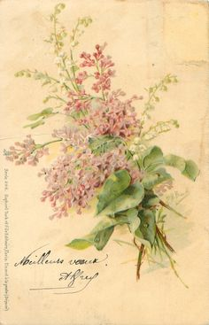 French postcard ~ lilac  lily of the valley