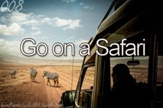 Go on a Safari... Ugh, this one's for my hubby. I'd rather not get eaten by a lion or mauled to death by a rhino. ;) No really, I'd have fun... if I survived. lol
