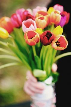 bouquet of assorted tulips // photo by Matt and Katie