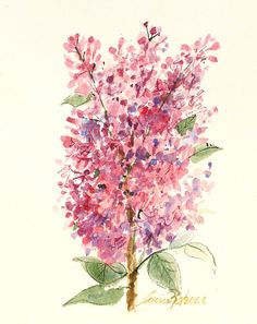 Watercolor Painting Cottage Decor Pink Lilacs by BetweenTheWeeds, SOLD