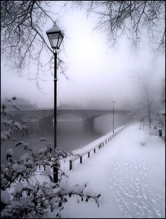 express photo, foggi morn, the bridge, winter wonderland, white christmas, winter scenes