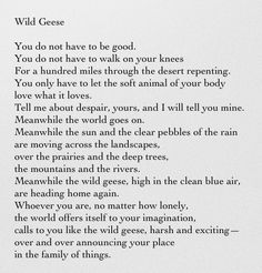 Wild Geese by Mary Oliver- One of the most beautiful poems ever written