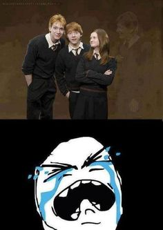 Ron, Ginny, Fred, and George.