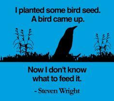 Steven Wright makes us lol :)