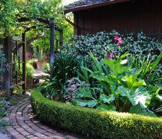 hedg, edible garden, rosalind creasi, garden paths, side yards, gardens, garden idea, edibl landscap, yard ideas