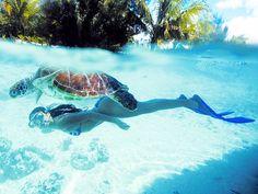 Bucketlist- swim with sea turtles