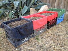 Have any milk crates laying around? Any old tshirts? If so, than you can have a square foot garden! The tshirts keep the soil well drained.