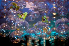 """Glass bubbles for a water themed wedding.  This idea comes from an """"Under the Sea"""" styled shoot. Photo by A. Tappen Photography via Hot Pink Brides."""