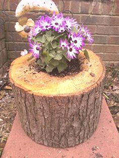 Home made Log Planter