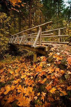 Jackson County, Oregon