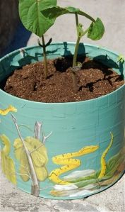 Popcorn Can Upcycle - turn can into a planter - use children's book & papier mache & spray paint...  May have to ask candy for one of her tins to try this out!