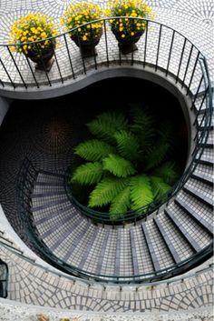 Fibonacci | Spiral