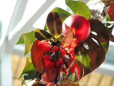 Hawaiian Christmas Decorations