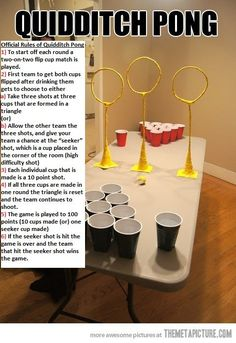 Quidditch Pong (quidditch,pong,drinking games,harry potter) This will happen at some point in my life