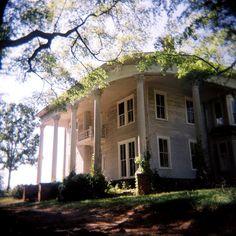 plantation, Georgia