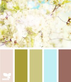 Potential living room colour