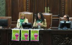 New Parliament of Women Prioritizes Gender Laws in Argentina    Read more: http://globalpressinstitute.org/global-news/americas/argentina/new-parliament-women-prioritizes-gender-laws-argentina#ixzz20t8QRlyY
