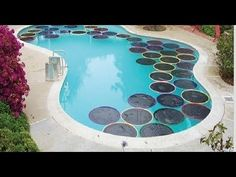 """DIY Hula Hoop Pool Warmers   If you'd like to save a bit on your heating bills, these black, sun-catching """"lily pads"""" will help absorb some heat and insulate your pool, so you can keep swimming even when it's a bit cooler outside."""