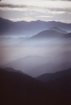Mountain Fog  By [Hold still]