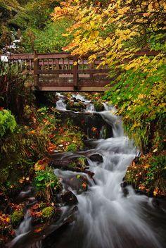 Wahkeena footbridge- Wahkeena Falls, Columia River Gorge, OR