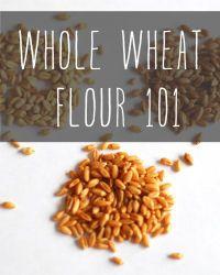 Whole Wheat Flour 101