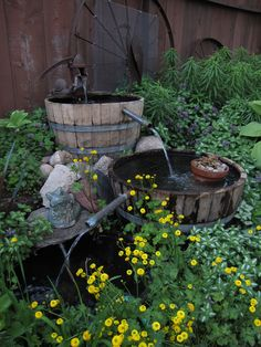 Water garden made out of whiskey Barrels