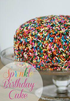 Sprinkle Birthday Cake #sprinkles #birthday sprinkle birthday cake, birthday parties, birthdays, sprinkl birthday, birthday cake with sprinkles, eat, birthday cakes sprinkles, cake sprinkl, dessert