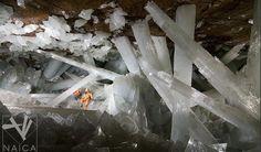 Cueva de Naica