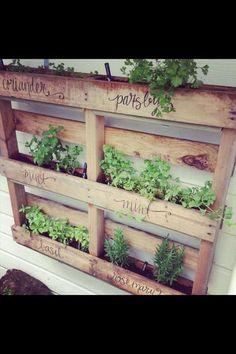 Diy pallet herb garden, if only my penmanship were that beautiful...