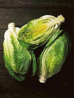 Little Gem Lettuce is crisper and sweeter if you grow it yourself! Its size makes it perfect for small gardens.