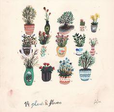 14 plants and flowers / angela dalinger