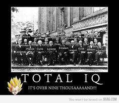 I.Q Level