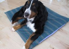 Make a Durable Dog Bed for Less Than $25 >> blog.diynetwork.com/maderemade/how-to/make-a-durable-diy-dog-bed?soc=pinterest