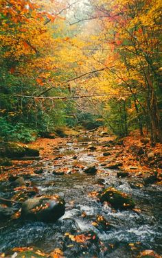 Gatlinburg, Tennessee in the fall.