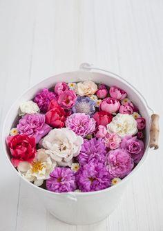 Bucket of blooms.
