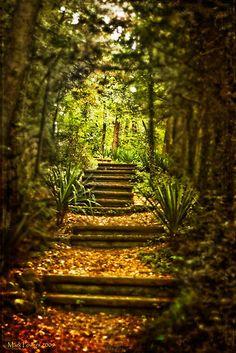 The Path - Eureka Springs AR