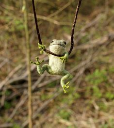Tiny Frog Necklace / sculpture - needle felted