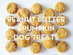 DIY Peanut butter and pumpkin dog treats