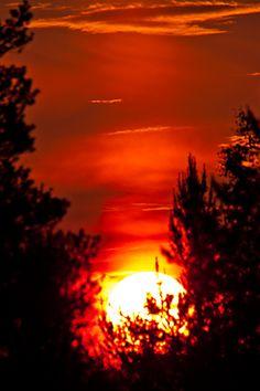Midnight Sun with Solar Pillar  Vuojärvi Lappi  photo by Gerilla
