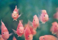 <3  adorable!