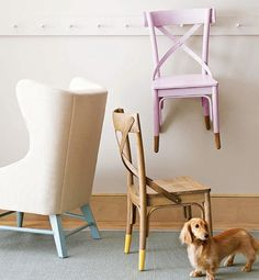 Raw leg/dipped chairs and doxie