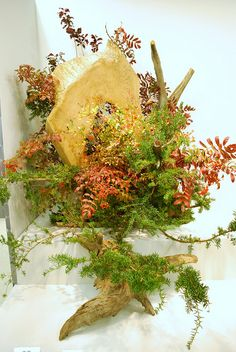 Ikebana Exhibition in Osaka by Sansai Photography, via Flickr