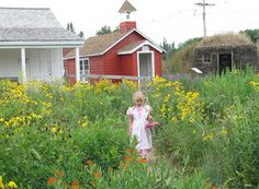 Great site for Laura Ingalls books tons of links. A link to every actual location of where Laura lived.