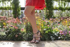 Dress: Jessica Simpson via TJ Maxx, Shoes: Marc Fisher